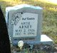 Artie Arney