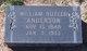 William Butler Anderson