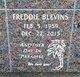 Profile photo:  Freddie Blevins