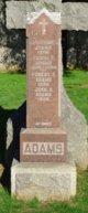 Annie Agnes <I>Shefflin</I> Wafer