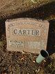 Wyvonia M. Carter