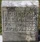 Robert B Alexander