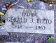 Profile photo:  Gerald J. Bitto