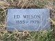 Profile photo:  Ed Wilson