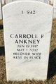 Profile photo:  Carroll R Ankney