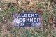 Profile photo:  Albert Reckner