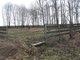 Amish Cemetery #3