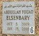 Abdullah Fouad Elsenbary