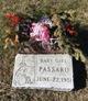 Profile photo:  Baby Girl Passaro