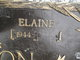 Elaine Allison