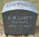 Amanda M. Losey
