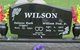 Delores Ruth <I>Tippie</I> Wilson