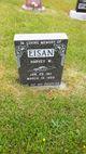 Harvey W Eisan