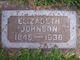 Elizabeth <I>Hardinger</I> Johnson