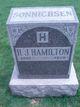 "Doramine Caroline ""Minnie"" <I>Sonnichsen</I> Hamilton"