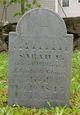 Sarah E. Adams