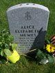 Alice Elizabeth <I>Hoy</I> Mewes