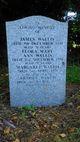 James Wallis