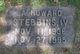 Profile photo:  A Howard Stebbins, IV