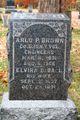 Elvira B. <I>Ball</I> Brown