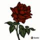 Rosesforever