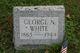 Rev George N. White