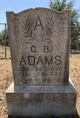 Green Berry Adams