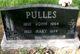"Johannes Petrus ""John"" Pulles"