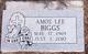 Amos Lee Biggs