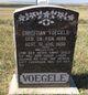 Christian J Voegele