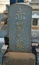 Otohachi <I>Fujisaki</I> Akahoshi