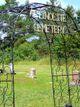 Actinolite Cemetery