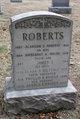 Profile photo:  Alanson Sanborn Roberts