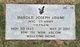 """Harold Joseph """"Joe"""" Adami"""