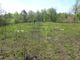 Belle Grove Cemetery