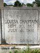 Martha Louisa <I>Chastain</I> Holden