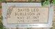 David Leo Burleson Jr.