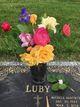 Michele Ann <I>Hartmus</I> Luby