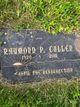 Raymond P. Cullen