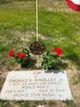 SSGT Thomas R. Wholley Jr.