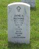 Jane Ann <I>Fox</I> Blevins