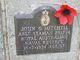 John George Mitchell