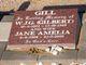 Profile photo:  Jane Amelia <I>Liebich</I> Gill