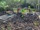 Elia Family Burial Grounds