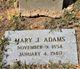 Profile photo:  Mary Jane <I>Wilson</I> Adams