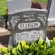 H Diane Ellison