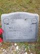 William Leroy Trowbridge, Jr