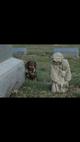 graveyard gals
