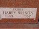 Harry Wilson Johnston