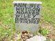 Ann Hutson Nixon Wiley